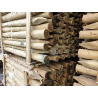 1.8m Economy Round Timber - Treated (75-100mm)